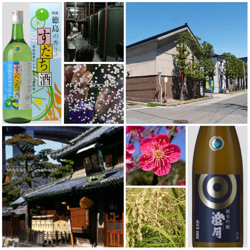 New Sake Tasting Banner