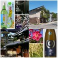 NEW SAKE TASTING At many of our previous sake tastings we've been very fortunate to host a visiting representative from the sake brewery whose sake we were pouring. In fact, quite...