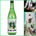 SPRING SEASONAL SAKE TASTING SPRING has finally arrived at The Sake Shop! How do we know it's Spring you ask? Is it because of the beautiful weather we've been having or...